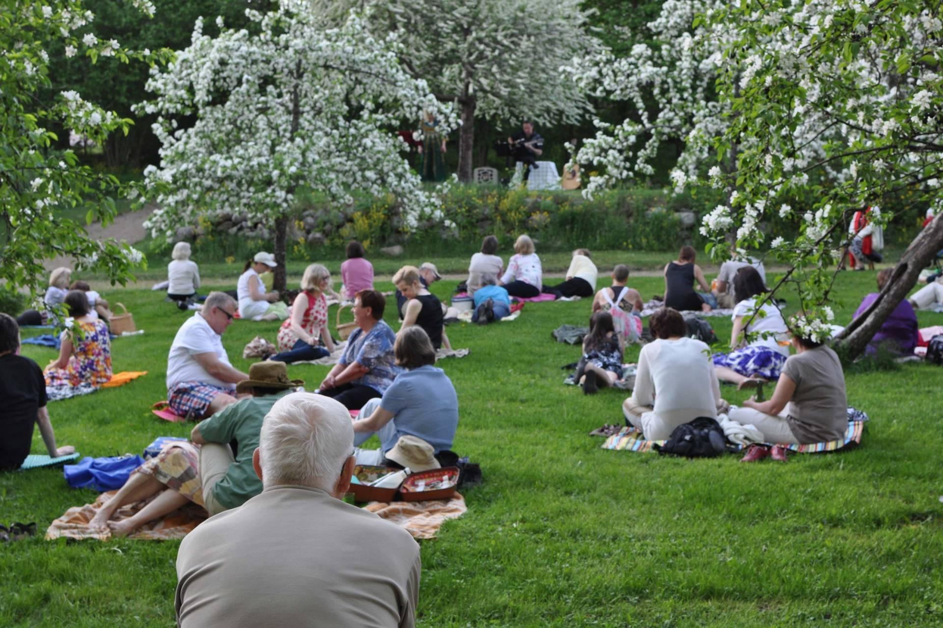 Ihmisiä piknikillä kukkivien omenapuiden alla Voipaalan taidekeskuksen puutarhassa